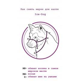 Халти (недоуздок для собак)