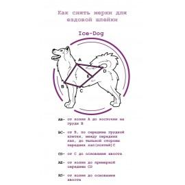 Набор для занятий ездовым спортом ( Ездовая шлейка, ошейник, потяг)