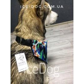 Ошейник-бандана для собак