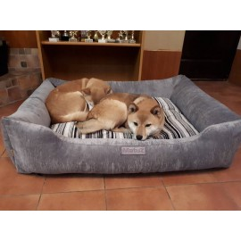 Лежаки для собак (3)