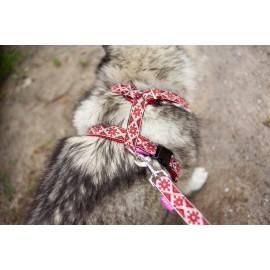"""Шлейка  прогулочная для собаки """"Этнические мотивы"""" с подкладом"""