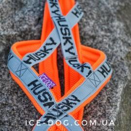 Шлейка ездовая для собаки x-back HUSKY