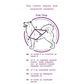 "Шлейка ездовая для собаки x-back ""PAWS"""